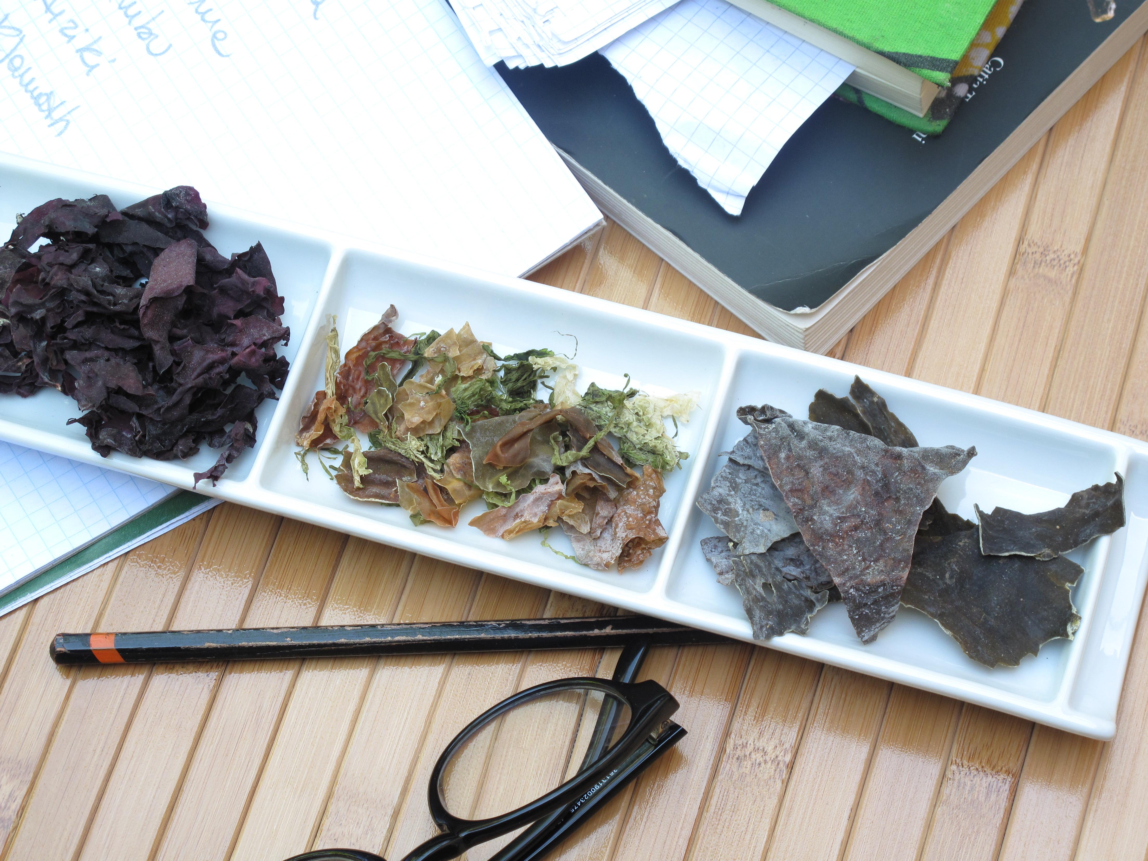 Le alghe benessere in cucina cucina che passione - Alghe in cucina ...